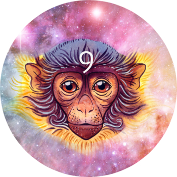 red-monkey-2